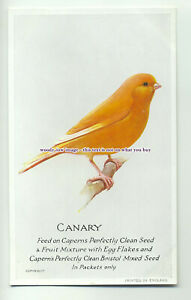 an0270-Canary-Feed-on-Capern-039-s-Nature-Food-Plain-Back-Postcard