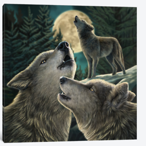 Wolf Song  Lisa Parker Throw Blanket Silk Touch with Sherpa Lining 50  x 60