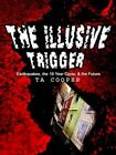 The Illusive Trigger Earthquakes The 19 Year Cycle & The Future 9781403360885