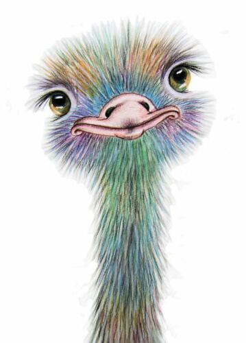 Ostrich Print Fashion Poster Kids Home Interior Wall Picture Decoration A4