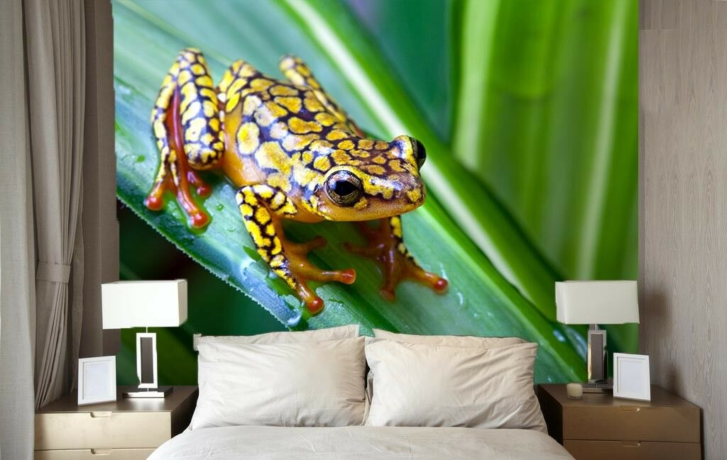 3D Tropischer Frosch 73 Tapete Wandgemälde Tapete Tapeten Bild Familie DE Summer