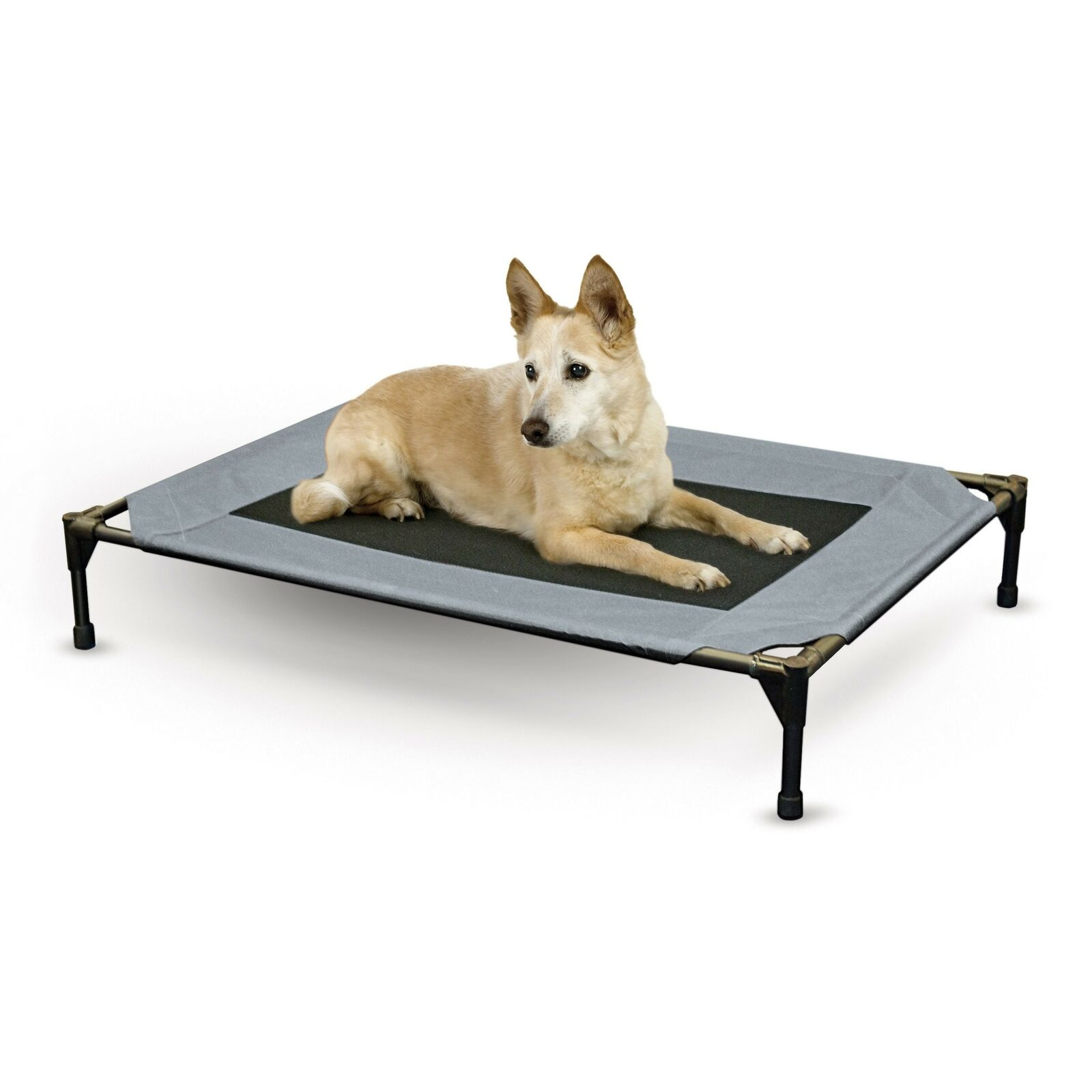 K & H Original Pet Cot Elevated Bed for Dogs Cats, Large Large (30  x 42  x 7 )