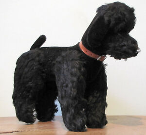 Amical Peluche 136_chien Caniche, Poodle Dog, Poedel Hond, Hund Luxuriant In Design