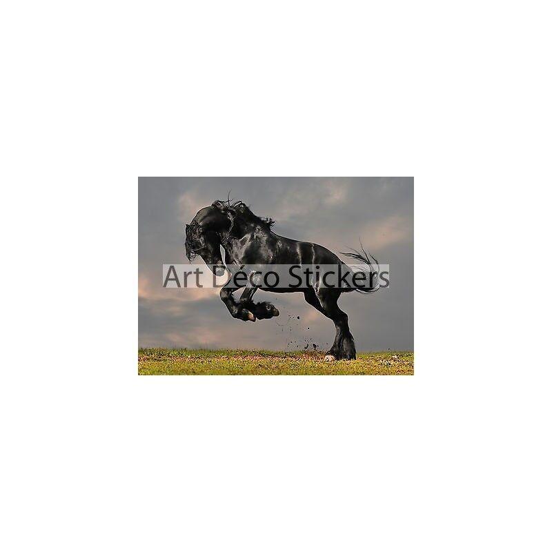 Adesivo Parete Gigante Cavallo 260x360cm P136 8e4bba96d1b6
