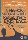 Pigeon SAT on a Branch Reflecting on Existence 5021866745305 DVD Region 2