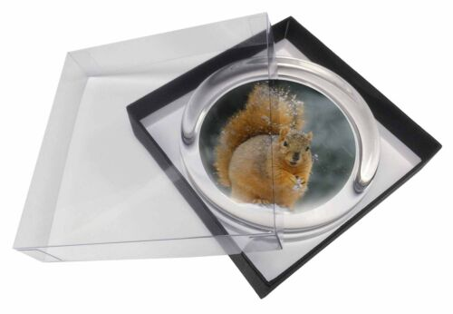 AS-2PW Red Squirrel in Snow Glass Paperweight in Gift Box Christmas Present