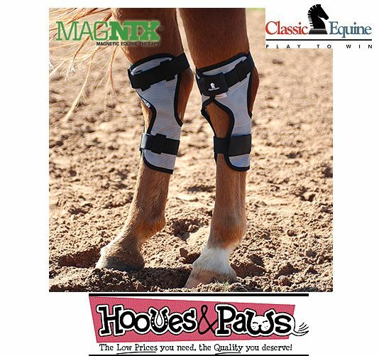 Classic Equine Magntx Jarrete Pierna Cruzado Terapia Magnética Alivio Treatment