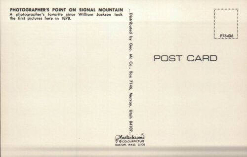 Postcard Photographer/'s Point Signal Mountain Grand Teton National Park Wyoming