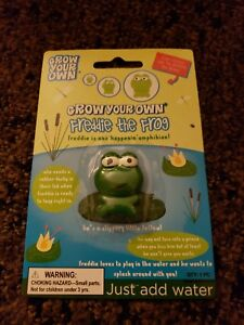 Grow-Your-Own-Freddie-the-Frog-Toy-Can-Grows-600-It-039-s-Size-In-Water