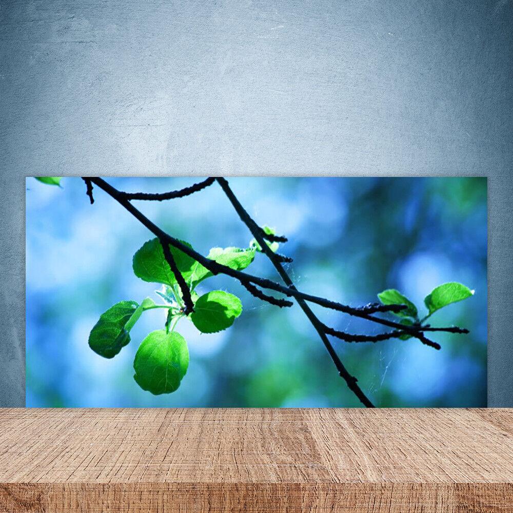 Crédence de cuisine en verre Panneau Paroi 100x50 Floral Feuilles Branche