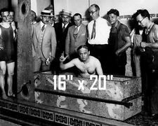 "Houdini~Personality~Magic Poster~Magician~Straight Jacket~ 16"" x  20"" Photo"