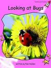 Looking at Bugs: Pre-reading by Pam Holden (Paperback, 2004)