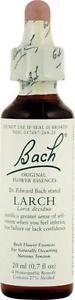 Larch-Flower-Essence-0-7-oz-20-ml-Bach