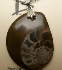 "Ammonite Fossil Shell Pendant w/ 1.2mm 18kgp Metal Ball Chain 18"" Long # 50030"