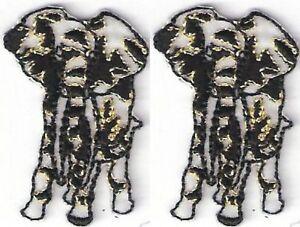 "1.5/"" Safari Leopard Flower Embroidery patch"