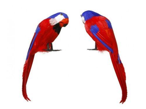 Oiseau 37cm PERROQUET en plumes accessoire décoration Pirate pas cher NEUF