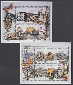 Sierra Leone Sc 1896-1903 MNH. 1996 Mushrooms & Fungi, cplt set incl Souv Sheets
