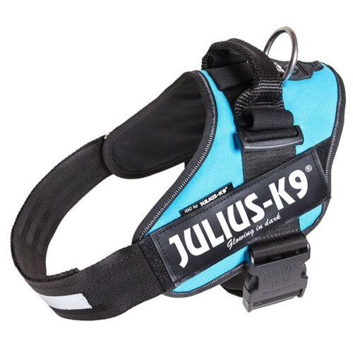 Julius K9 IDC Powerharness Dog Harness aquamarine NEW