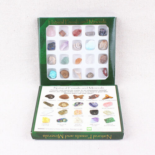 Geology Science Mineral /& Rock Natural Crystal Gemstone 20pcs Set Kids Brand new