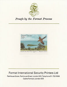 St Lucia 3352 - 1985 Mangrove Cuckoo 35c on FORMAT INTERNATIONAL PROOF CARD