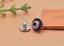 10X-Silver-Tone-Flower-Leather-Craft-Bag-Belt-Purse-Decor-Turquoise-Conchos-Set miniature 61