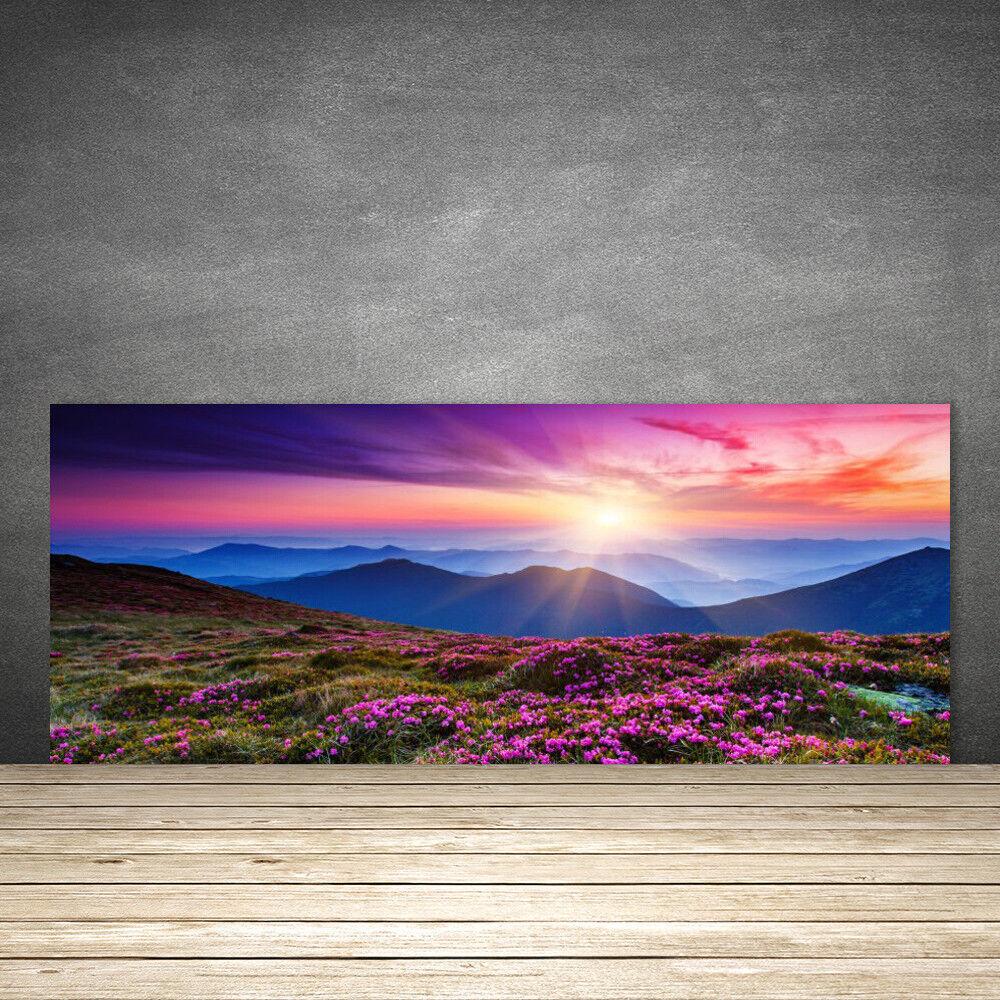 Crédence de cuisine en verre Panneau 125x50 Paysage Montagnes Prairie Fleurs