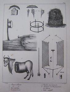 Engraving-Xixeme-Hauntings-and-Finger-Traps-Camo-Hut-Walking-Cow-Artificial