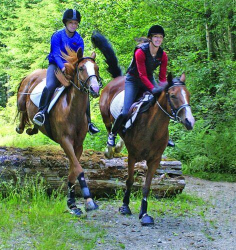 Scarpe per cavallo Simple Hoof Boots shoes for horses