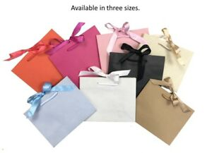 81b121c21 Luxury Boutique Shop Ribbon Tie Gift Bags Rope Handle Events Bag ...