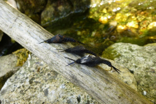 4 St STONEFLY Fliege  # 6 Top Bach-Regenbogen-Forelle Saibling Fliegenfischen