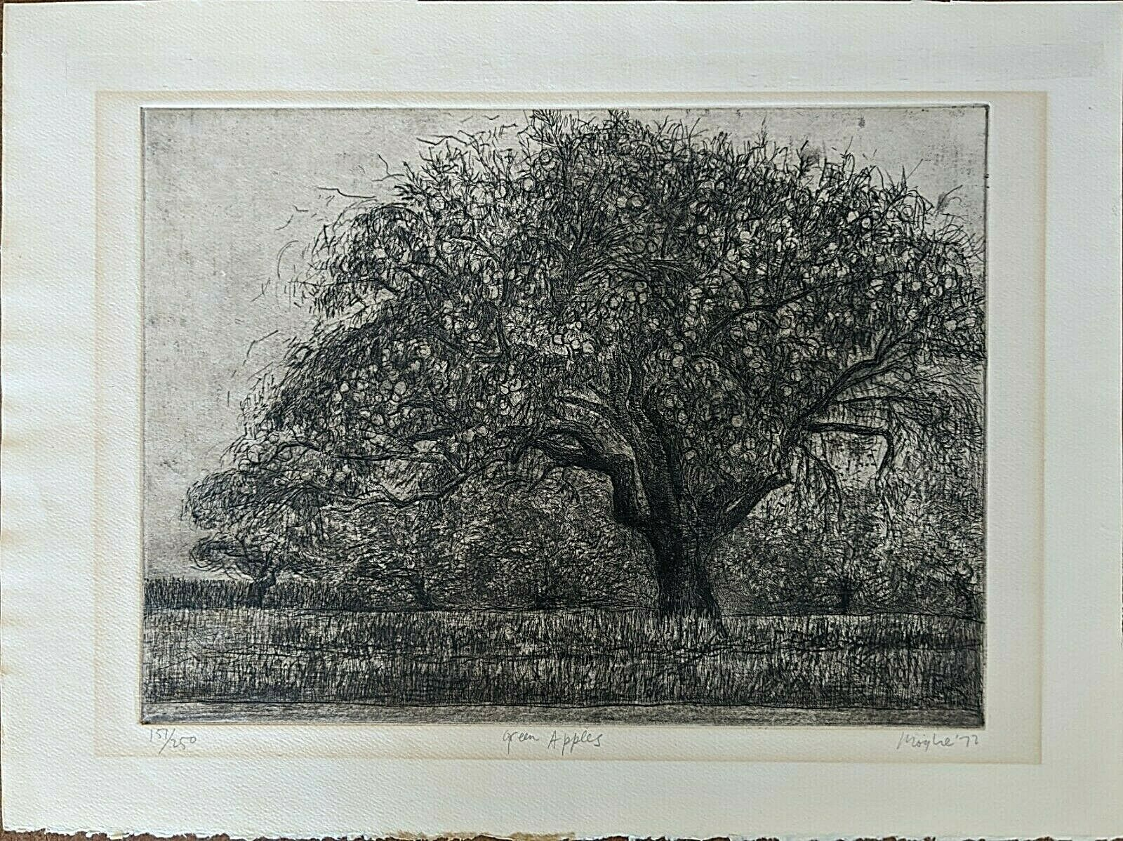 """Image 1 - Moishe Smith Etching, """"Green Apples"""" 1972, Pencil Signed"""