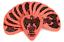 thumbnail 7 - 12 Ernie Ball EVERLAST DERLIN Guitar Picks Blue Pink Orange Green Purple Red