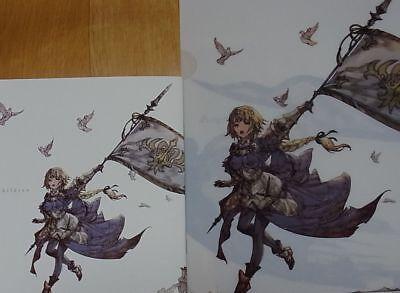 Yu Akinashi Fate FGO Color Fan Art Book RQ06 with Clear File GRIDMAN C95