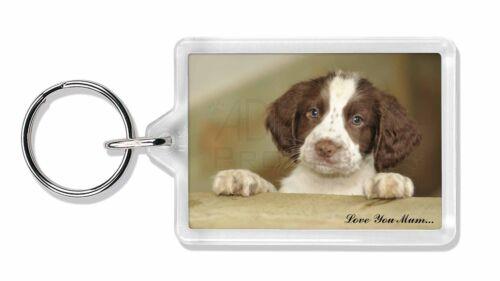 Springer Spaniel Pup 'Love You Mum' Photo Keyring Animal Gift, AD-SS76lymK