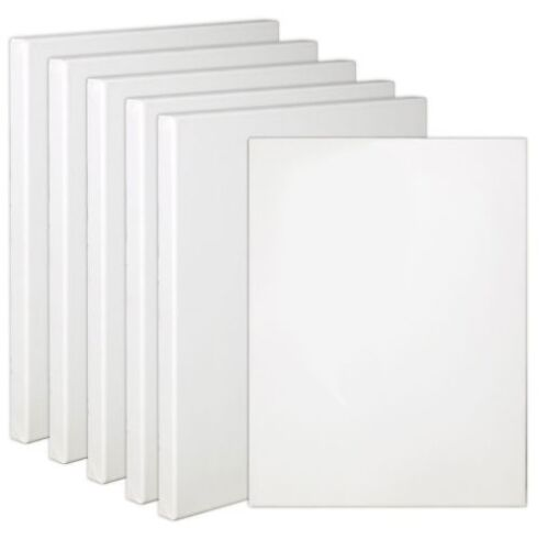 6 Pack Artist Blank Prestretched Cotton Canvas Primed Gesso Acrylic Oil Painting
