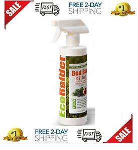 Ecoraider 16 Oz Natural And Non Toxic Travel Spray Bed Bug Killer Hot Ebay