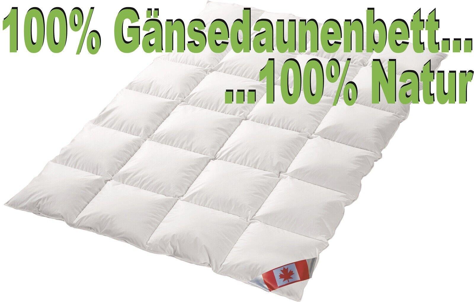 Polaris Premium Winterdecke extra warm 100%Natur Gänsedaune Hochsteg 200x220 NEU