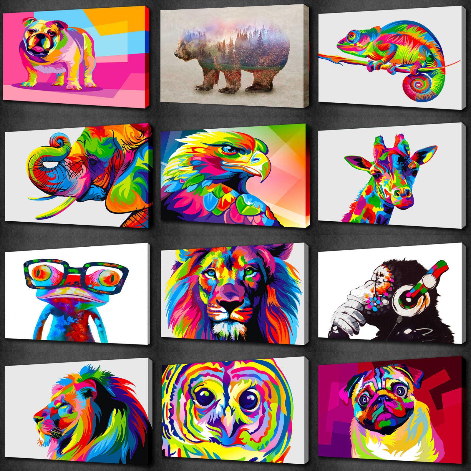 Gli animali Coloreeeati collezione Tela Wall Art Print PICTURE molti per scegliere