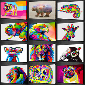 COLOURFUL ANIMALS COLLECTION CANVAS WALL ART PRINT PICTURE MANY TO