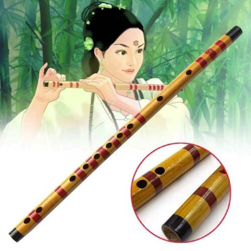 Beginner Bamboo Flute Professional Wood Flute Musical Instruments Chinese Dizi
