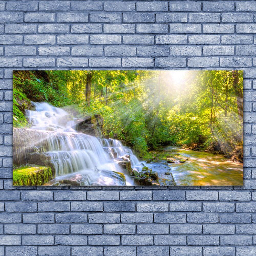 Glass print Wall art art art 140x70 Image Picture Waterfall Forest Nature 013b24