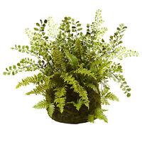 13hx17w Mixed Fern Silk Plant W/twig & Moss Basket -green