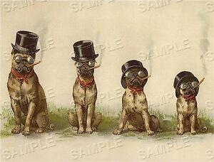 CIGAR-SMOKING-PUGS-VINTAGE-ANTIQUE-VICTORIAN-CANVAS-TOBACCIANA-DOG-ART-PRINT