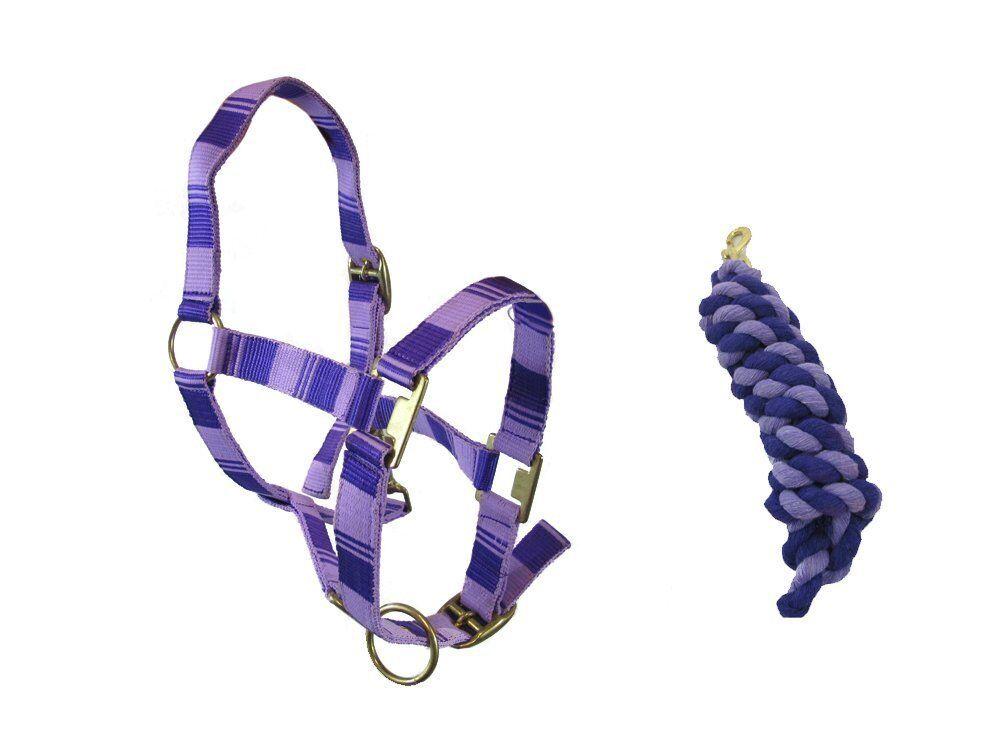 NEW HORSE PONY COB FULL SMALL PONY HEAD COLLAR KNIGHT LEAD ROPE SET KNIGHT COLLAR RIDER ec2242