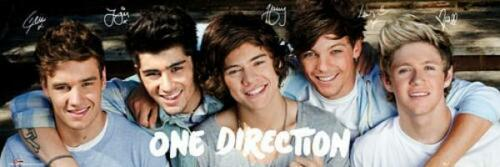 Midi Poster 91.5cm x 30.5cm new and sealed Group One Direction