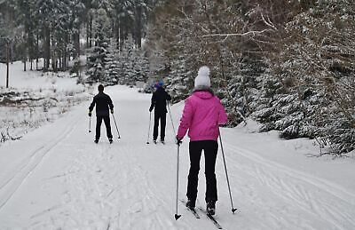 winterhaven sports