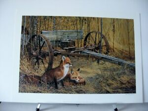 Sinissippi-Shadows-Red-Fox-Foxes-Scott-Zoellick-Signed-Wildlife-Art-LE-Print