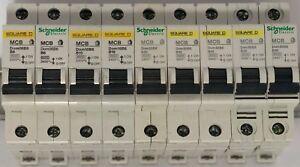 Square D Domae Circuit Breaker16Amp Type B MCB
