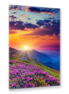 Postereck-Leinwand-0568-Berglandschaft-mit-Lila-Blumen-Sonnenuntergang-Natur