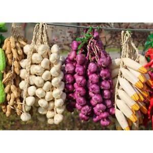Stringa-di-aglio-di-cipolla-artificiale-verdure-artificiali-Famiglia-Decorazione